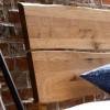 Kopfteil Baumkante