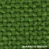 Biarritz Green